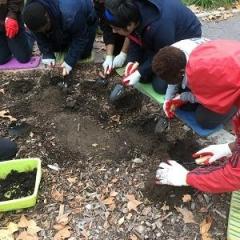 Participants practice planting seeds.